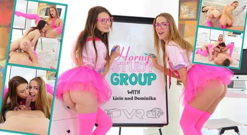 Horny Study Group – TeenMegaWorldVR